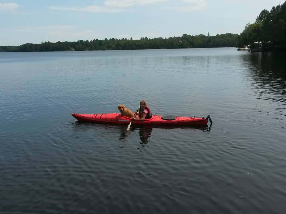 Is Bass Lake Dog Friendly