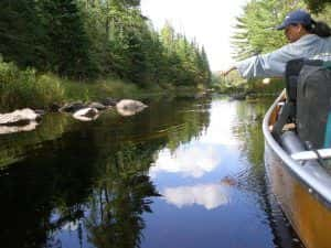Outfitter BWCA