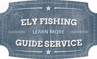 Boundary Waters Fishing Guides near Ely, MN